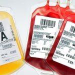 plasma per curare coronavirus